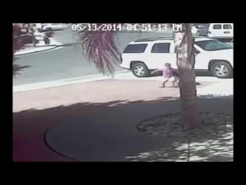 【動画】勇敢なネコが凶暴な犬から子供を助けるの巻